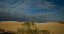 Desert-des-Bardenas-Reales-Espagne-et-végétation