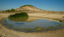 desert-bardenas-oasis-photo-paysage
