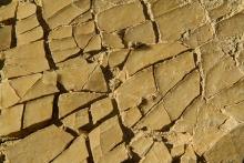 desert-bardenas terre-cristallisée-photo-flore