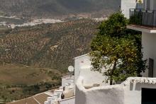 photo-paysage-oranger--Zahara-de-la-sierra-Andalousie-Espagne